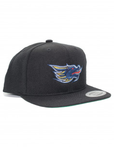 Dragons Snapback KIDS